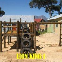 lion_king (7)