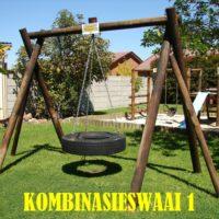 swings (1)