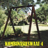 swings (4)